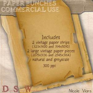 Nlv_paper_bunches_preview
